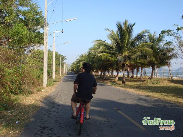 ขี่จักรยานเลียบชายหาด ที่พักปราณบุรี บ้านรักทะเล