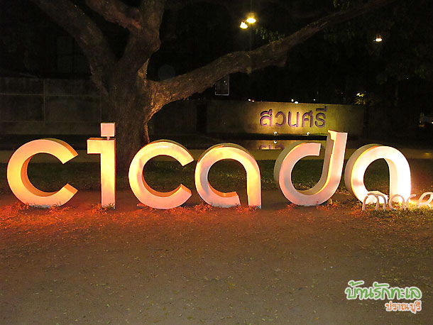 cicada market สวนศรี จุดที่นักท่องเที่ยวชอบถ่ายรูปเป็นที่ระลึกกับป้ายสถานที่