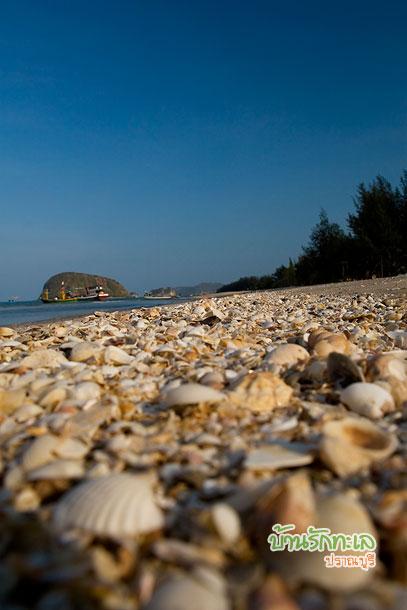 ชายหาด ปราณบุรี มีเปลือกหอยแนวหาด บ้านรักทะเล