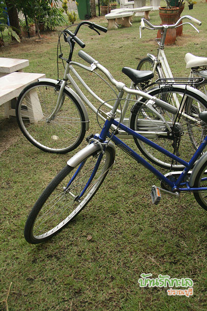 ขี่จักรยานเลียบหาด